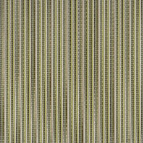 Delray Stripe Kiwi (Item #DJ6 3021371) +$0.00